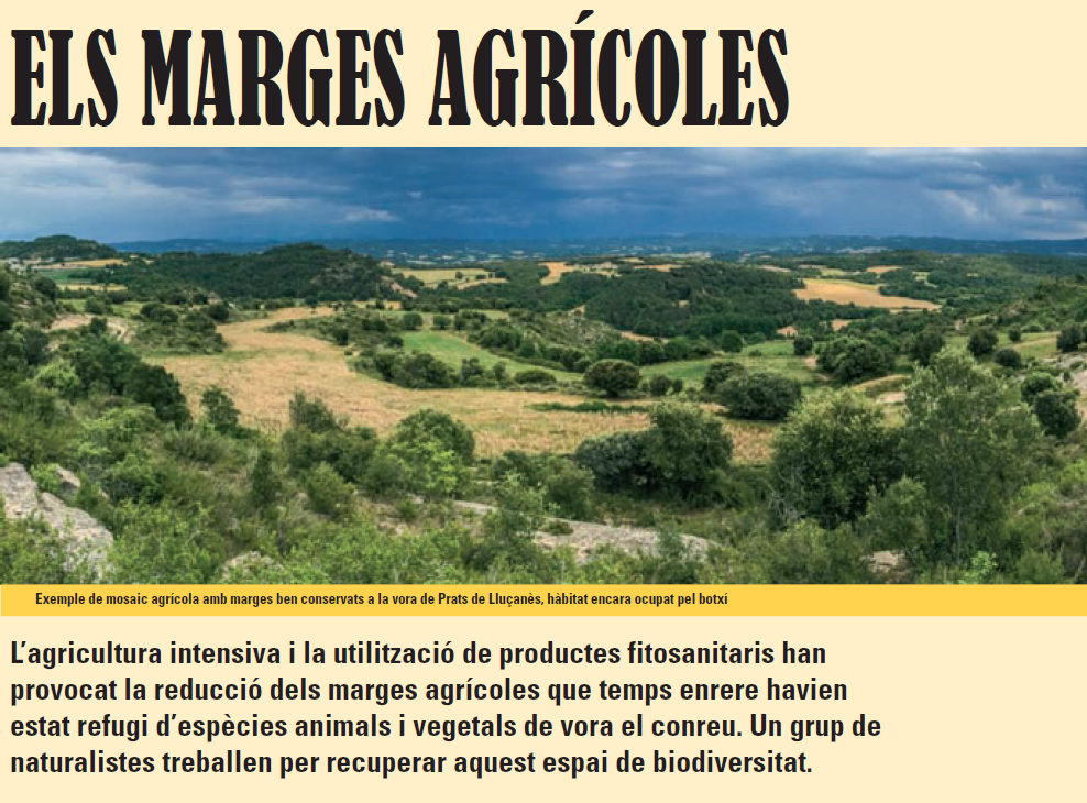 11_Marges_agricoles